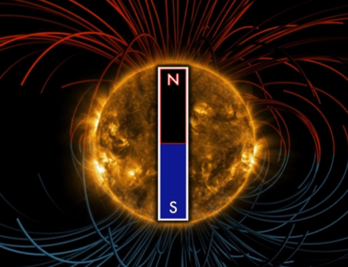 Does the Sun's Magnetic Field Flip?